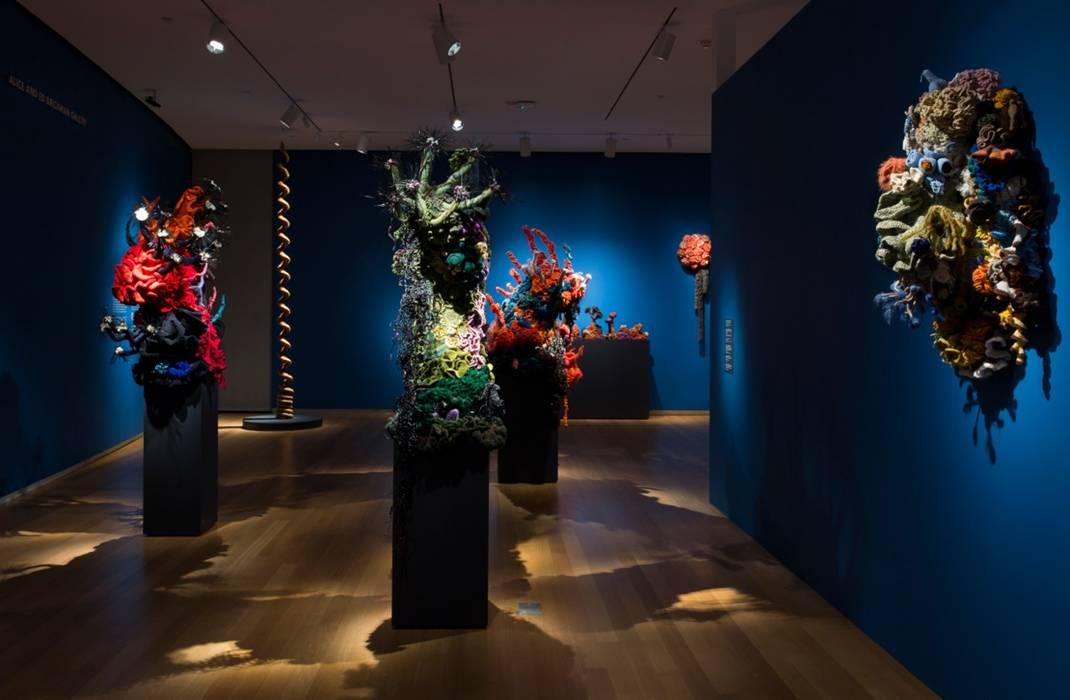 Reef sculptures inside gallery