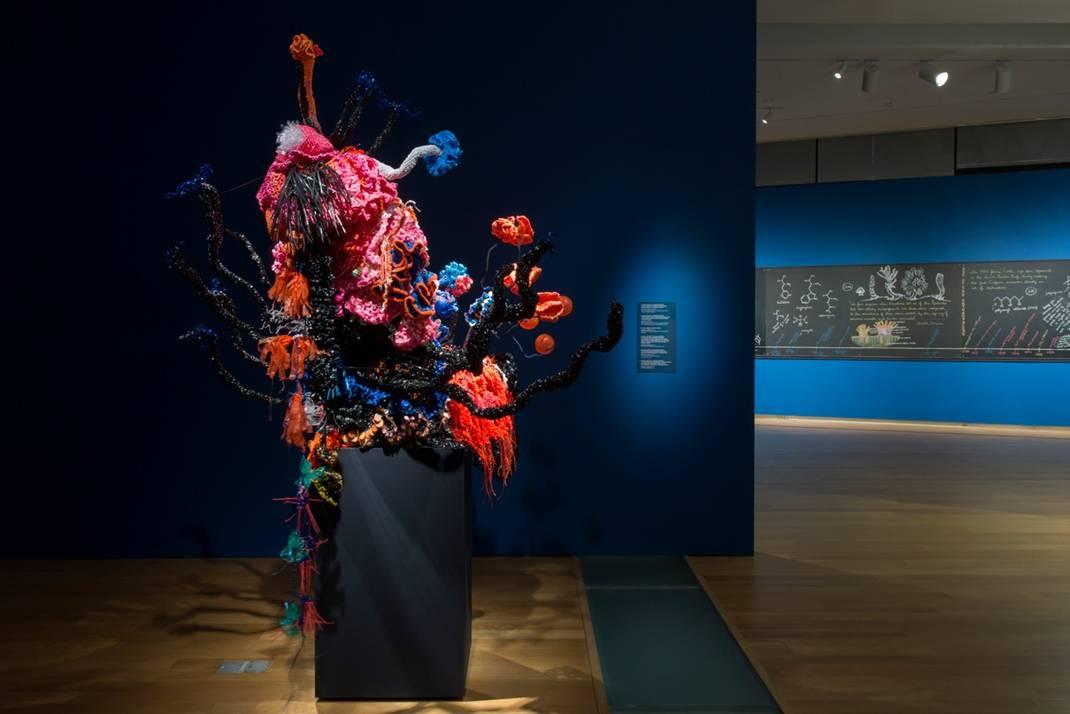 Reef sculpture inside gallery