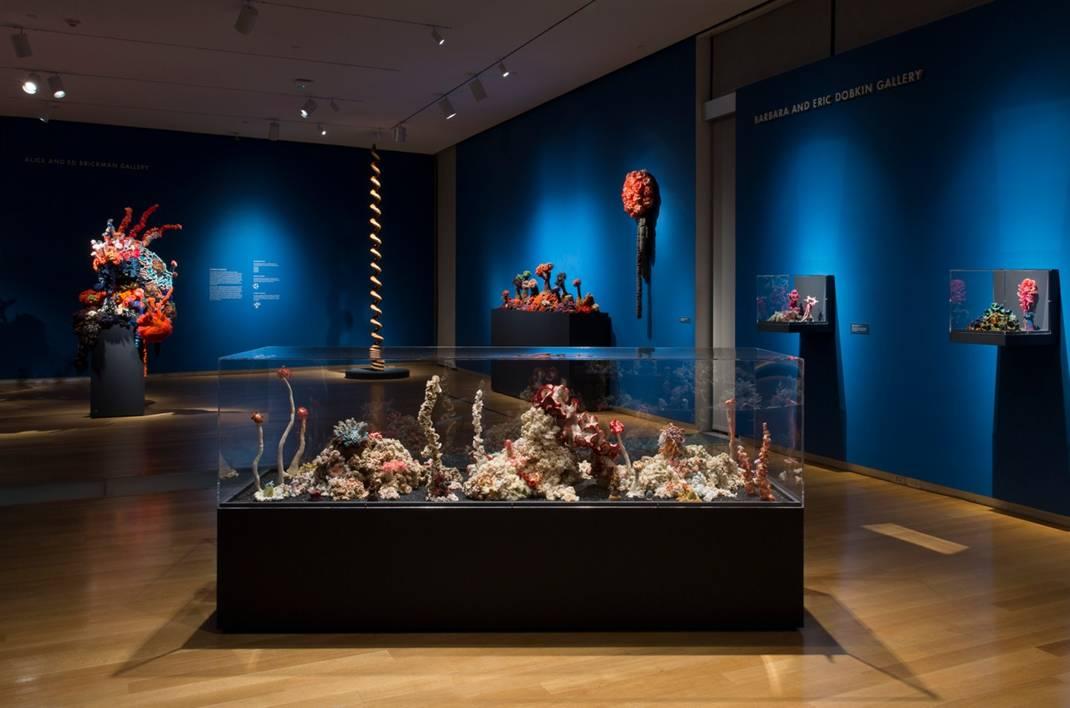 Reef sculptures in gallery.