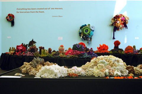 View of crochet coral reef sculptures installed in gallery.