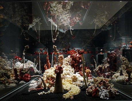 Installation view of crochet coral reef sculptures in darkened gallery.