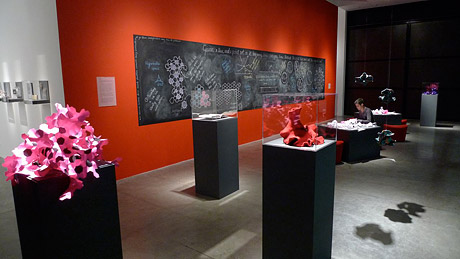 Installation view of crochet coral reef sculptures in front of red wall in gallery.