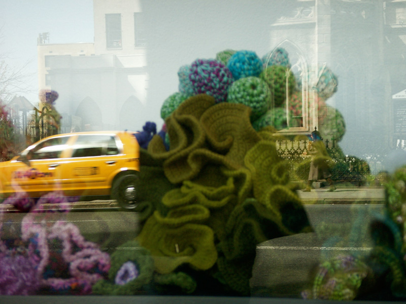 Installation view of crochet coral reef sculptures inside a window display.