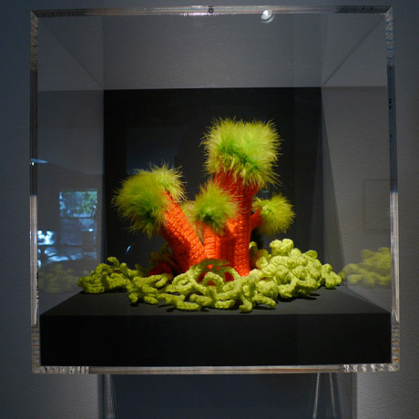 Installation view of crochet coral reef sculptures inside a glass vitrine.