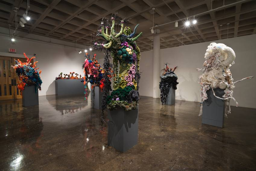 Crochet coral reef sculptures on plinths in large gallery