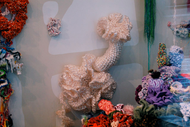 Detail of crochet coral sculptures installed on wall.