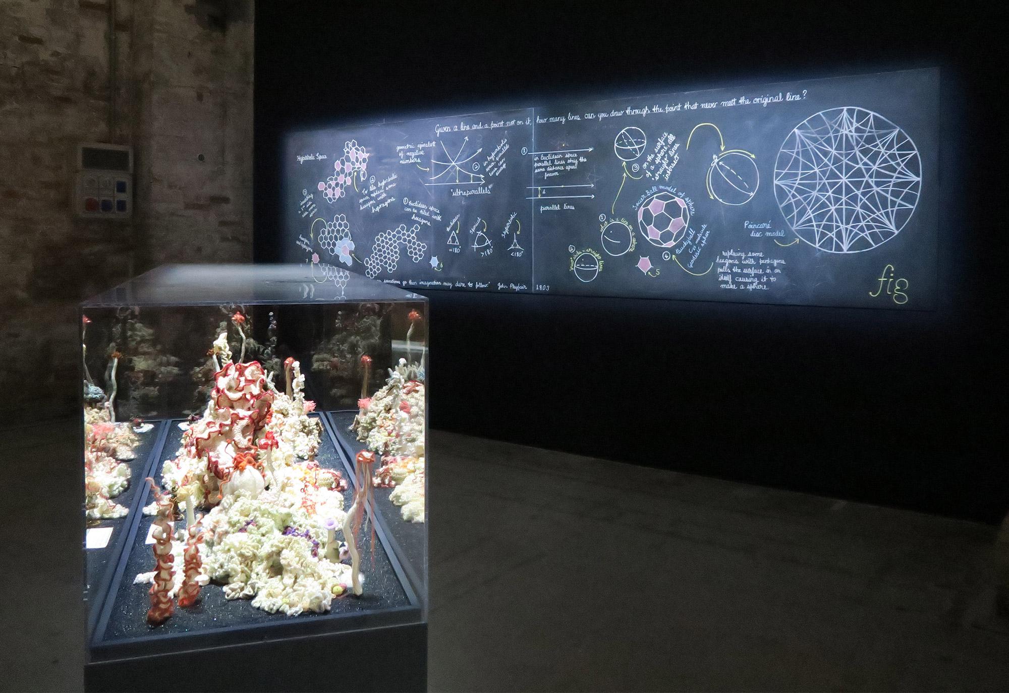 Reef sculpture in front of blackboard