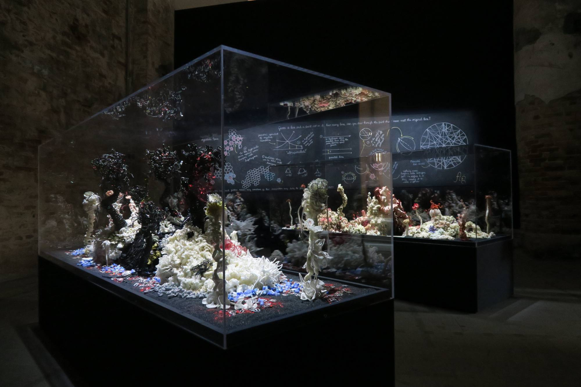 Reef sculptures in gallery dramatically lit against black background