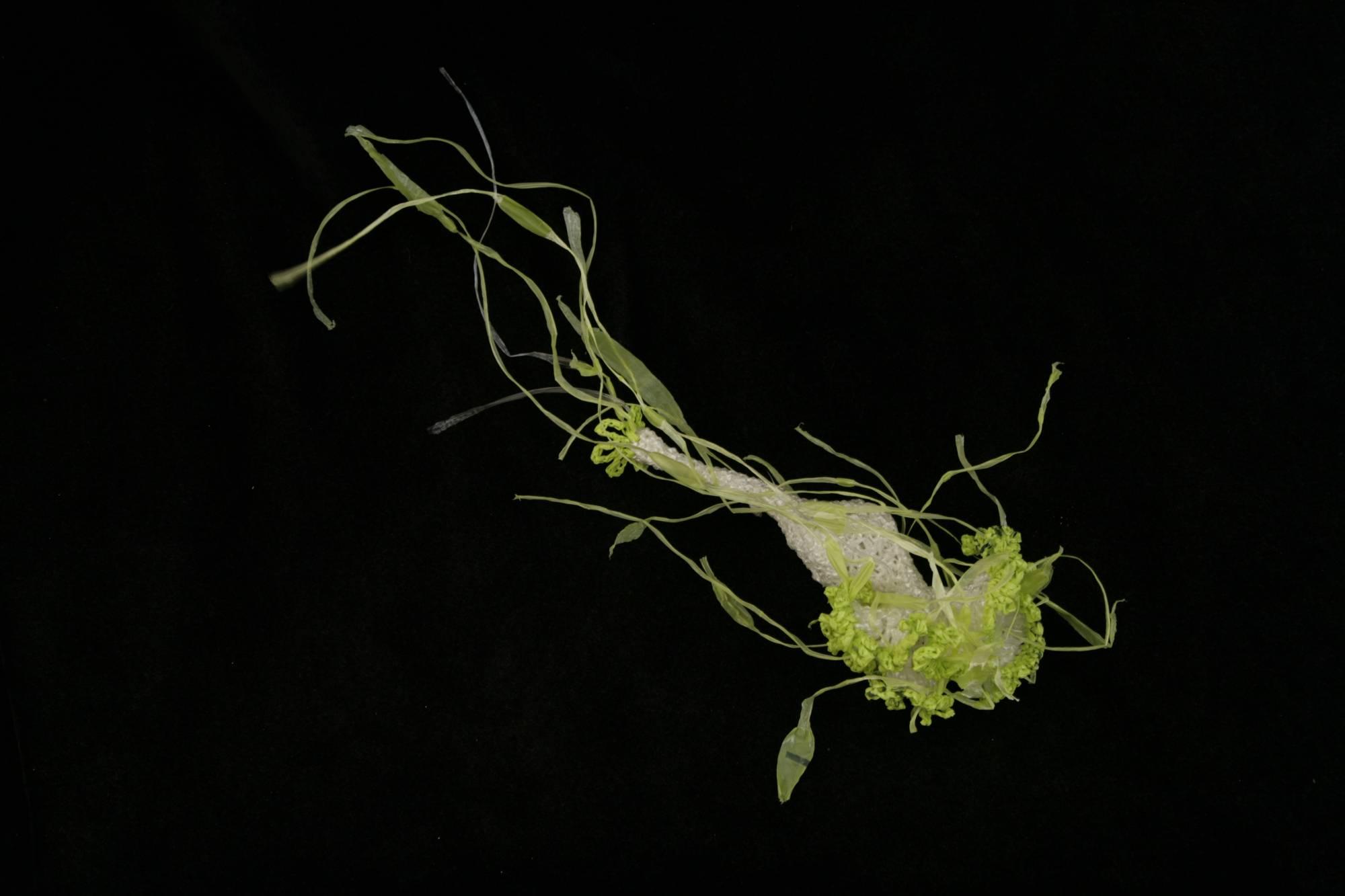 Green jellyfish sculpture on black background