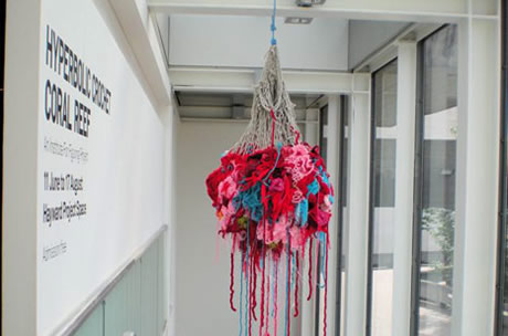 View of hyperbolic crochet coral reef sculpture installed in gallery next to windows.