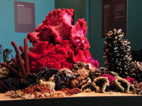 Detail of hyperbolic crochet coral reef sculpture.