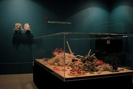 View of hyperbolic crochet coral reef sculpture installed in a vitrine.
